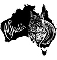 Wombat on map of Australia vector image vector image