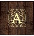 Luxury Monogram Emblem template vector image