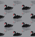 black swan seamless background vector image vector image