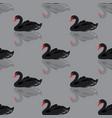 black swan seamless background vector image