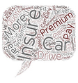 Car Insurance How Can I Lower My Premiums text