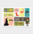 flat colorful birds collection vector image