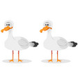 funny cute seagull vector image vector image