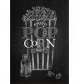 Poster popcorn salt chalk vector image vector image