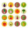 trendy set stylish flat vegetable icons vector image vector image