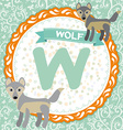 ABC animals W is wolf Childrens english alphabet vector image