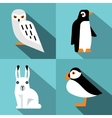 Polar animals in flat style with long shadow vector image