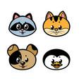 cute cartoon kitten puppy penguin raccoon color vector image vector image