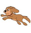 dog fluffy jumping vector image vector image