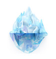 glacier icy rock floating on sea water vector image