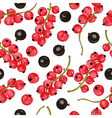 Black and red currant seamless pattern vector image vector image