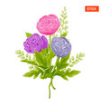 bouquet of multicolored peonies vector image vector image