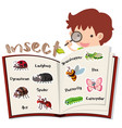 boy and different insects in the book vector image
