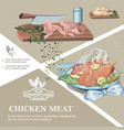 chicken meat colorful template vector image