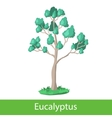 Eucalyptus cartoon tree vector image