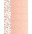 flower background with lace vector image vector image