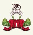 fresh organic vegetables vector image