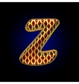 golden and red letter z vector image vector image