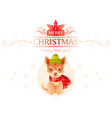puppy chihuahua dog merry christmas happy new year vector image vector image