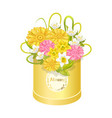 spring delicious flower colorful anemones box vector image vector image