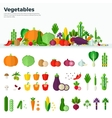 Banner Icons of Vegetables Healthy Food vector image
