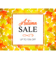 autumn sale banner with autumn leaves background vector image vector image