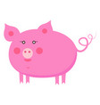 cute piggy cartoon flat sticker or icon vector image vector image