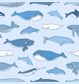seamless pattern with aquatic animals or marine vector image vector image