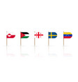 toothpick flags oval edge pennants isolated set vector image