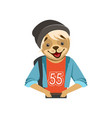 cute fashion dog guy character in black hat vector image vector image