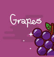 grapes fruit delicious shiny poster vector image