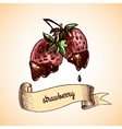 Strawberry chocolate sketch vector image