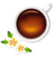 tea cup with frangipani vector image vector image
