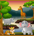 wild animals are enjoying nature lake vector image vector image