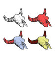 bull or cow skull with horns in different color vector image