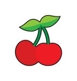 cherry icon sweet cherries vector image vector image