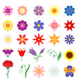 color flowers set vector image