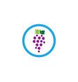 grape logo template vector image vector image
