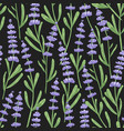 natural seamless pattern with lavender flowers vector image vector image