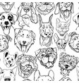 pattern with muzzles of dogs of different breed vector image vector image