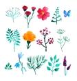 set of watercolor plants vector image