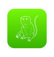 sitting monkey icon green vector image vector image