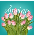 Spring Tulip Flowers over white EPS 10 vector image vector image