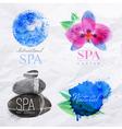 Symbols spa watercolor vector image