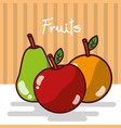 apple and orange pear fruits fresh juicy collage vector image vector image