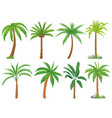 palm trees tropical tree green leaves beach vector image