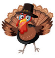 a turkey character on white background vector image