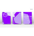 abstract cover with hexagon elements book design vector image vector image