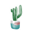 cactus in clay pot hand drawn vector image