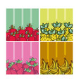 set of delicious fruits vector image